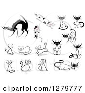 Clipart Of Sketched Siamese Spotted And Scared Cats Royalty Free Vector Illustration by Vector Tradition SM