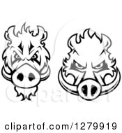 Clipart Of Black And White Aggressive Boar Heads Royalty Free Vector Illustration