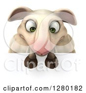 Clipart Of A 3d Sheep Looking Down At A Sign Royalty Free Illustration