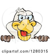 Clipart Of A Happy Bald Eagle Peeking Over A Sign Royalty Free Vector Illustration