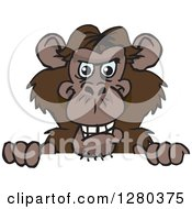 Clipart Of A Happy Chimpanzee Monkey Peeking Over A Sign Royalty Free Vector Illustration
