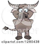 Happy Buffalo Standing