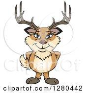 Happy Deer Buck Standing