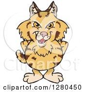 Grinning Bobcat Standing