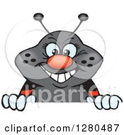 Clipart Of A Happy Ladybug Peeking And Smiling Over A Sign Royalty Free Vector Illustration by Dennis Holmes Designs