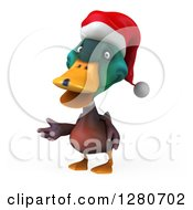 Clipart Of A 3d Christmas Mallard Drake Duck Presenting To The Left Royalty Free Illustration