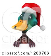Clipart Of A 3d Christmas Mallard Drake Duck Over A Sign Royalty Free Illustration