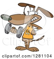 Cartoon Clipart Of A Happy Brown Dog Working Out With A Dumbbell Royalty Free Vector Illustration by toonaday
