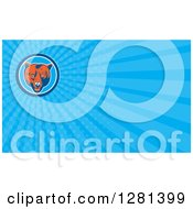 Clipart Of A Retro Woodcut Grizzly Bear Head And Blue Rays Background Or Business Card Design Royalty Free Illustration