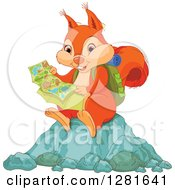 Cute Orange Squirrel Hiker Reading A Map And Sitting On A Rock