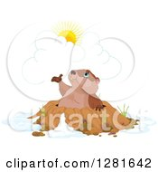 Clipart Of A Cute Groundhog Emerging From A Hole And Presenting The Sun Royalty Free Vector Illustration by Pushkin