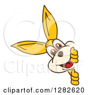 Clipart Of A Happy Kangaroo School Mascot Character Smiling Around A Sign Royalty Free Vector Illustration by Toons4Biz