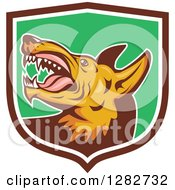 Clipart Of A Retro Vicious Wild Dog With Fangs In A Brown White And Green Shield Royalty Free Vector Illustration