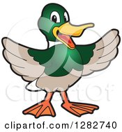 Clipart Of A Happy Welcoming Mallard Duck School Mascot Character Royalty Free Vector Illustration