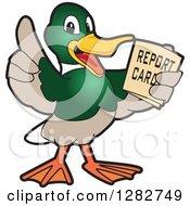 Happy Mallard Duck School Mascot Character Holding A Report Card