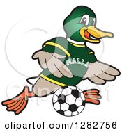 Clipart Of A Happy Mallard Duck School Sports Mascot Character Playing Soccer Royalty Free Vector Illustration by Toons4Biz