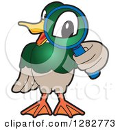 Clipart Of A Happy Mallard Duck School Mascot Character Looking Through A Magnifying Glass Royalty Free Vector Illustration by Toons4Biz