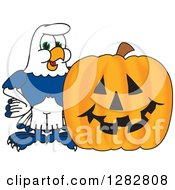 Clipart Of A Happy Seahawk School Mascot Character By A Halloween Jackolantern Pumpkin Royalty Free Vector Illustration