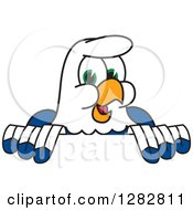 Clipart Of A Happy Seahawk School Mascot Character Smiling Over A Sign Royalty Free Vector Illustration by Toons4Biz