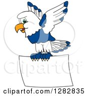 Clipart Of A Happy Seahawk School Mascot Character Flying With A Blank Sign Royalty Free Vector Illustration