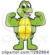 Clipart Of A Happy Turtle School Sports Mascot Character Flexing His Muscles Royalty Free Vector Illustration