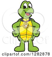 Happy Turtle School Sports Mascot Character Wearing A Medal