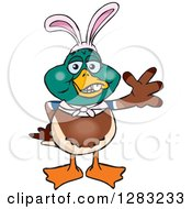 Clipart Of A Friendly Waving Mallard Duck Wearing Easter Bunny Ears Royalty Free Vector Illustration by Dennis Holmes Designs
