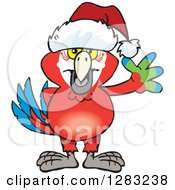 Clipart Of A Friendly Waving Scarlet Macaw Parrot Wearing A Christmas Santa Hat Royalty Free Vector Illustration by Dennis Holmes Designs