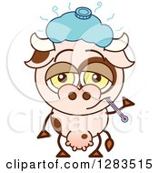 Clipart Of A Sick Cartoon Cow With An Ice Pack And Thermometer Royalty Free Vector Illustration by Zooco