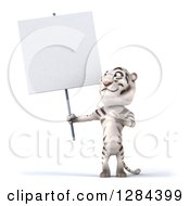 Clipart Of A 3d White Tiger Holding And Pointing To A Blank Sign Royalty Free Illustration