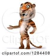 Clipart Of A 3d Tiger Presenting To The Left Royalty Free Illustration