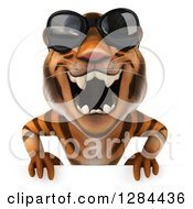 Clipart Of A 3d Tiger Wearing Sunglasses And Roaring Over A Sign Royalty Free Illustration