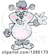Clipart Of A Cartoon Gray Poodle Dog Waving Royalty Free Vector Illustration by Dennis Holmes Designs