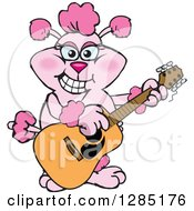 Clipart Of A Cartoon Happy Pink Poodle Playing An Acoustic Guitar Royalty Free Vector Illustration