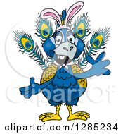 Clipart Of A Friendly Waving Peacock Wearing Easter Bunny Ears Royalty Free Vector Illustration