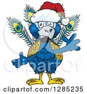 Friendly Waving Peacock Wearing A Christmas Santa Hat