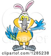 Clipart Of A Friendly Waving Blue And Yellow Macaw Wearing Easter Bunny Ears Royalty Free Vector Illustration