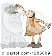 Clipart Cartoon Of A Hairy Caveman Reaching For Birds In A Nest Royalty Free Vector Illustration
