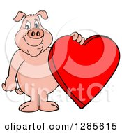Happy Pig Standing And Holding A Red Valentine Heart
