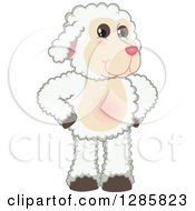 Happy Lamb Mascot Character Standing With Hands On His Hips