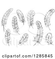 Clipart Of Black And White Feathers 2 Royalty Free Vector Illustration