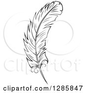 Clipart Of A Black And White Feather 8 Royalty Free Vector Illustration
