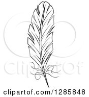 Clipart Of A Black And White Feather 9 Royalty Free Vector Illustration