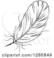 Clipart Of A Black And White Feather 10 Royalty Free Vector Illustration