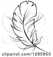 Clipart Of A Black And White Feather 11 Royalty Free Vector Illustration