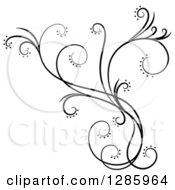 Clipart Of A Black And White Scroll Design Element With Floral Swirls 4 Royalty Free Vector Illustration