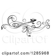 Clipart Of A Black And White Scroll Design Element With Floral Swirls Royalty Free Vector Illustration