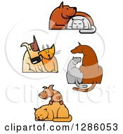 Clipart Of Cats And Dogs In Friendly Poses Royalty Free Vector Illustration