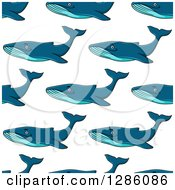 Clipart Of A Seamless Pattern Background Of Swimming Blue Whales Royalty Free Vector Illustration