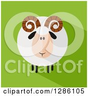 Clipart Of A Modern Flat Design Round Fluffy White Ram Sheep With A Shadow On Green Royalty Free Vector Illustration by Hit Toon